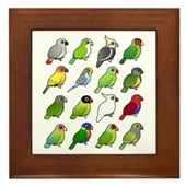 16 Birdorable Parrots Framed Tile