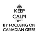 Keep calm by focusing on Canadian Geese T-Shirt