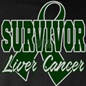 SURVIVOR LIVER CANCER Long Sleeve T-Shirt