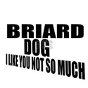 Briard Dog I Like You Not S Shirt