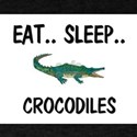 Eat ... Sleep ... CROCODILES T-Shirt