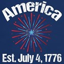 July 4th Fireworks T-Shirt