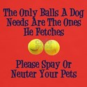 Only Balls A Dog Needs Dark T-Shirt