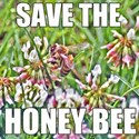 Save the honey bee T-Shirt
